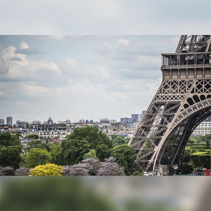 ParisILoveYou