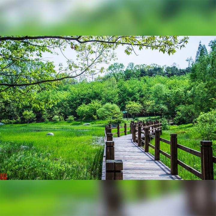 Suwon&Park-OsanPark