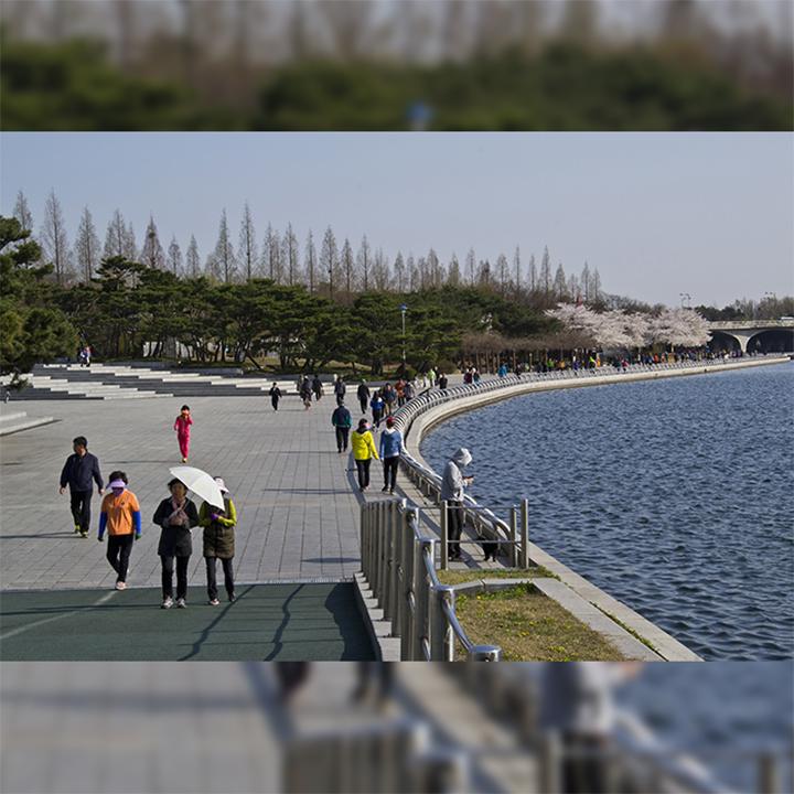 Ilsan Lake