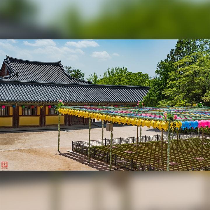 Gyeongju & Bulguksa 경주 & 불국사